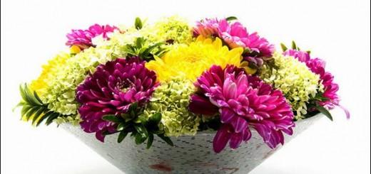 Cắm hoa trong nhà, chuyện phong thủy giờ mới nói ảnh 3