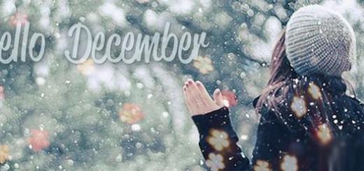12-cung-hoang-dao-va-tu-vi-thang-12-2015-1