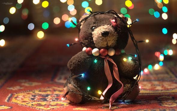 Giáng Sinh này vắng con