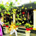 lua-tuoi-xong-nha-nam-binh-than-2016-sao-cho-dung-1